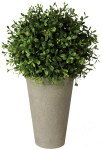 13″ Boxwood Orb/Pot